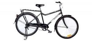 buffalo-bike2