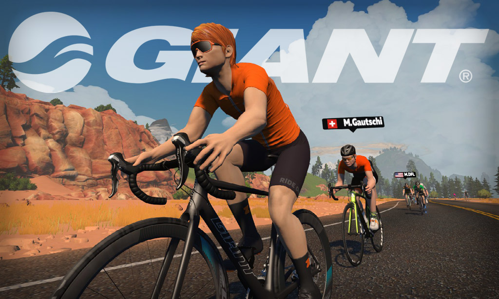 All About Zwift's Giant TCR Advanced SL Disc Frame